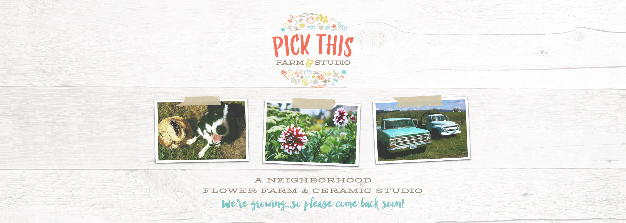 We're Growing at Pick This Farm & Studio